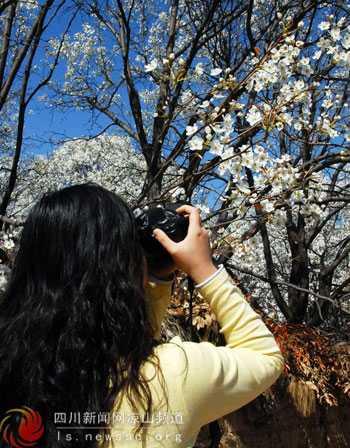 游客用镜头记录下美好的季节